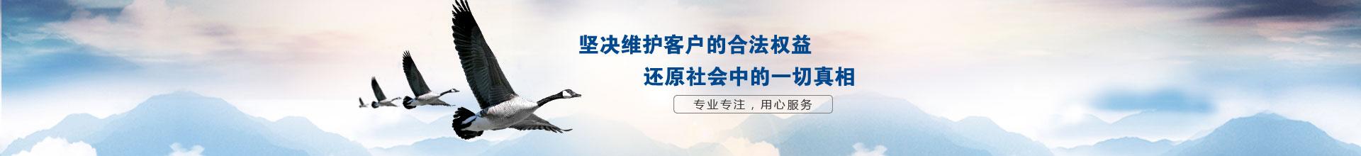 南京侦探公司